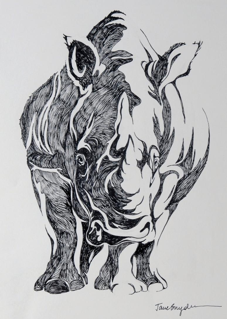 Rhino 02